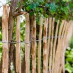 Zaunmaterial: Holz, Metall oder WPC?