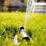 Bewässerungssystem – Ihr Gartenhelfer